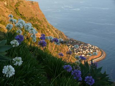 Madeira - Prazeres