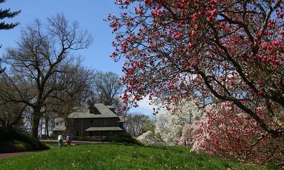 Morris Arborétum