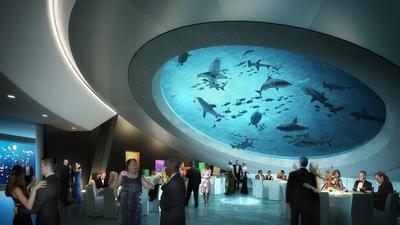 Miami Természettudományi Múzeum