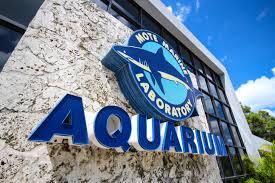 MOTE Marine Laboratórium és Akvárium