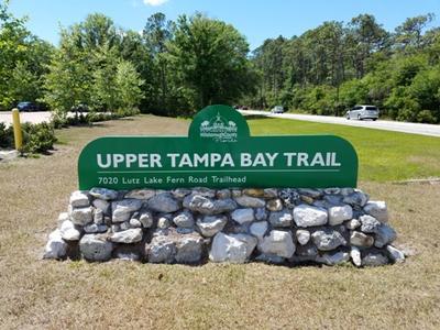 Bringázás a Felső Tampa-öböl partvonalán