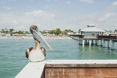 Mexikói-öböl partvidéke